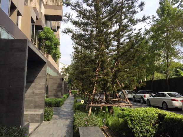 BKKMOVE Agency's 35sqm Cozy, Duplex Studio Condo to let at Ideo Morph 16