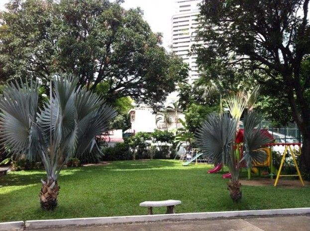 BKKMOVE Agency's 300sqm Nice Three Bedrooms unit has garden view and pool view in big balcony. Apartment to let at Prem Mansion Sukhumvit 12 9